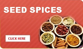 WholeSpices