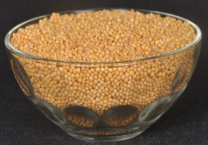 Yellow Mustard Seeds Manufacturer Exporter India