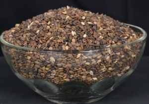 Brown Sesame Seeds Manufacturer Exporter India