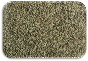 Fennel-Seeds-Singapore-Quality